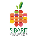 Consorzio Sibarit