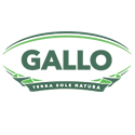 Gallo